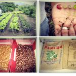 Crowdfunding Mailbox: Coffee Match, Hustle Bag, Tasting Box Wine Flight & Aquabot