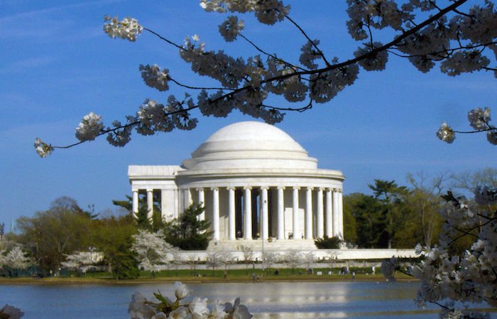 Brief: Crowdfunding Campaign Launched To Keep DC Cherry Blossom Festival Free