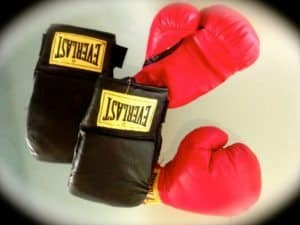Boxing Gloves Fight Box