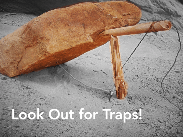 Look Out for Traps Charlie DeTar