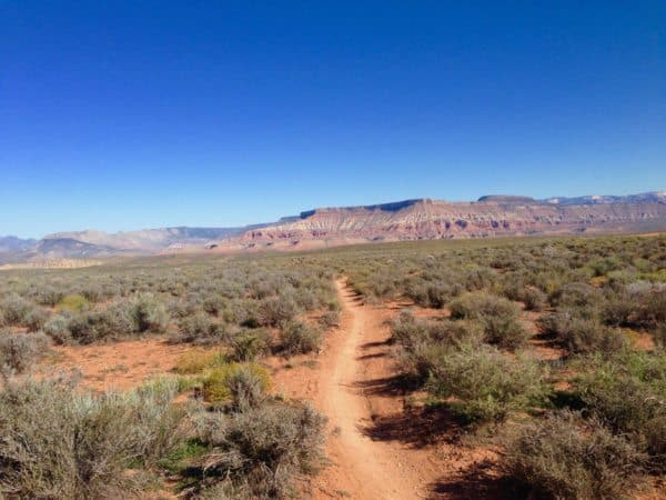 path-trail-utah-desert-blue-sky-mesa-scrub-bush