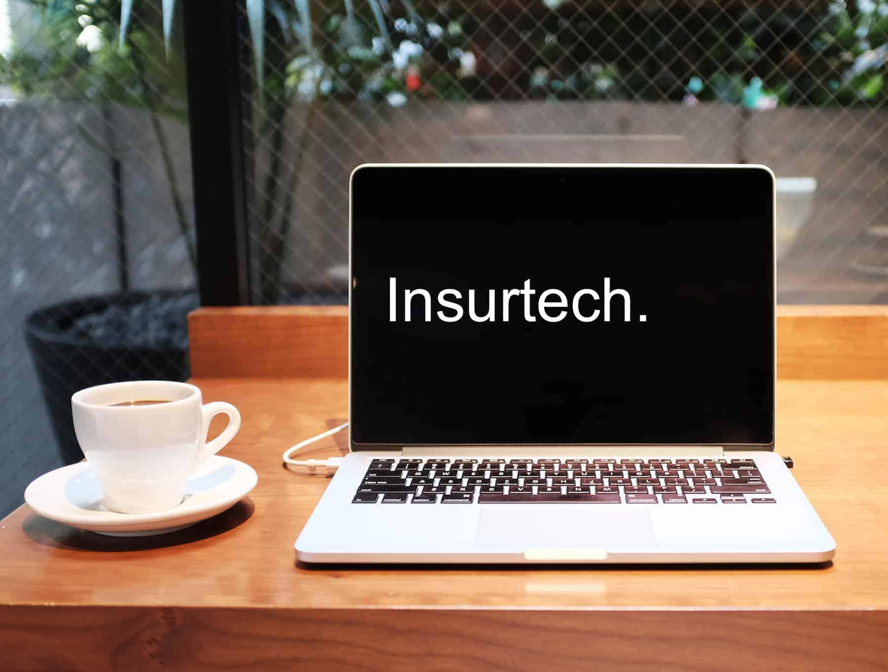 UK Insurtech Dinghy Appoints Dorian Zanker As New CEO