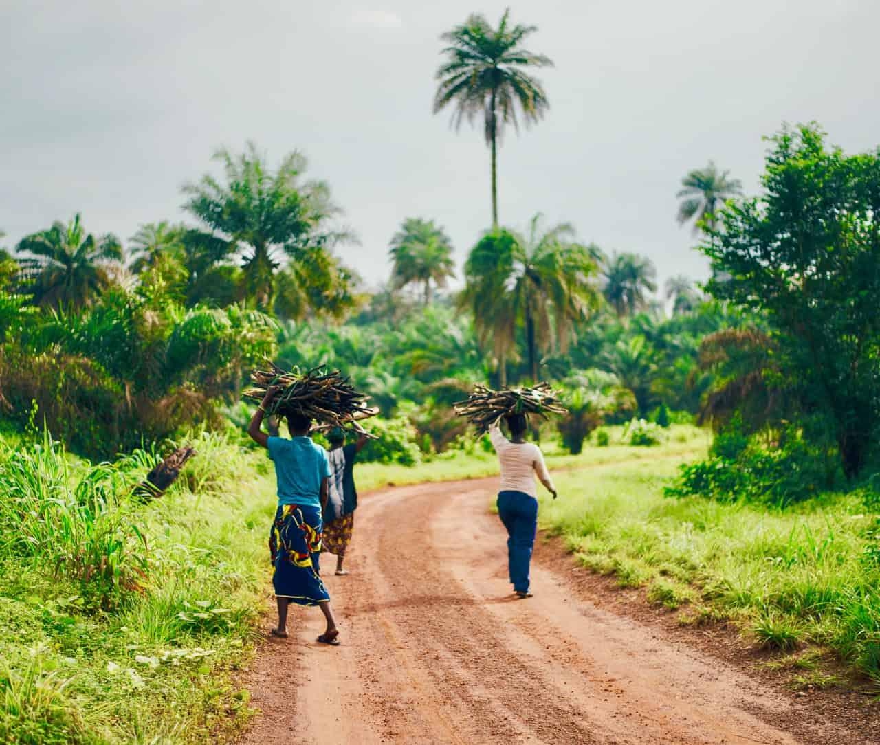 IBM's Microfinance Blockchain in Kenya Tests the Viability of Hyperledger