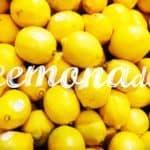 P2P Employment Marketplace bitJob Announces New Partnership With Insurtech Lemonade