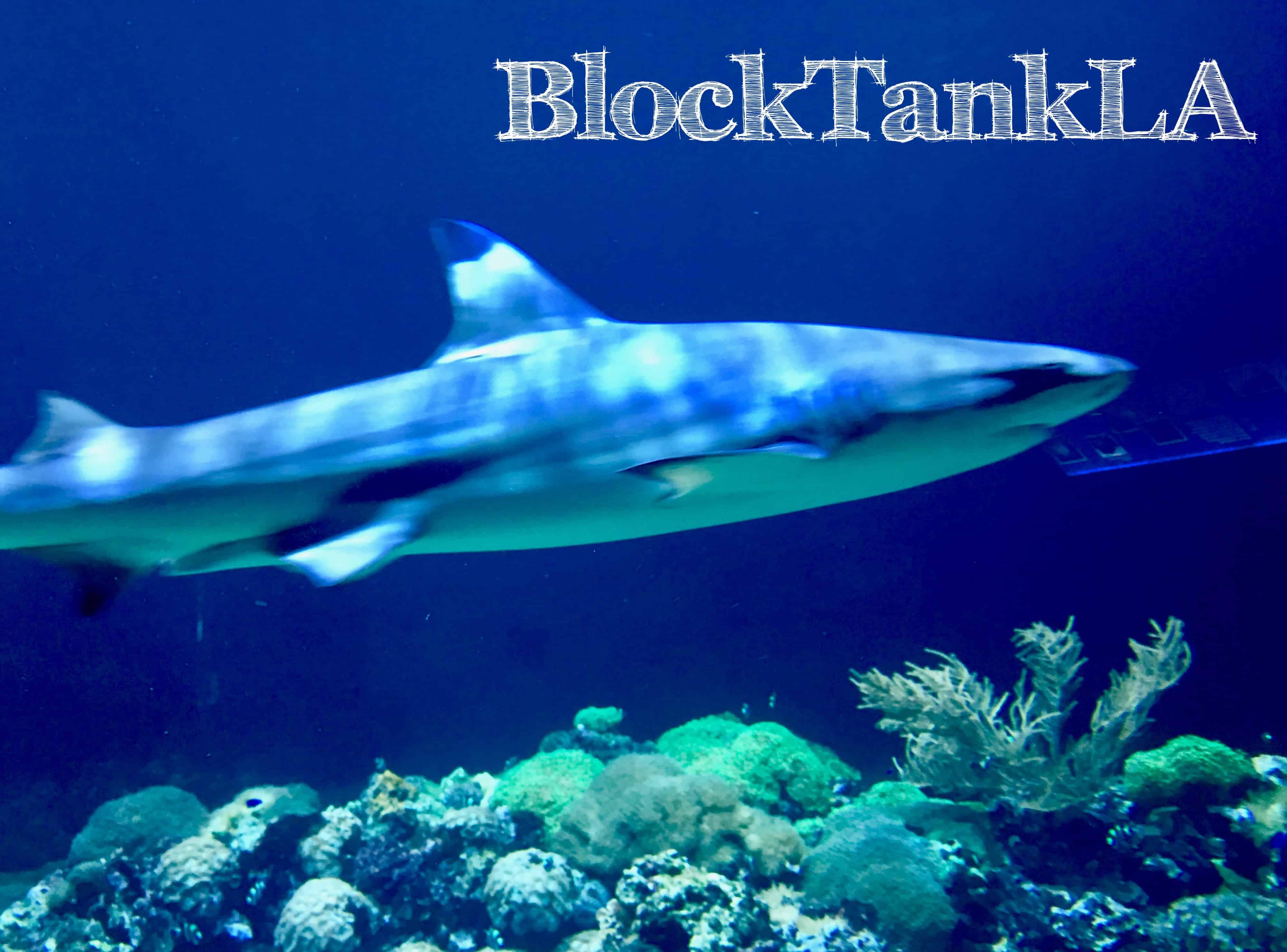 BlockTank LA, Sponsored by LA Mayor's Office, Announces Judges and Participants
